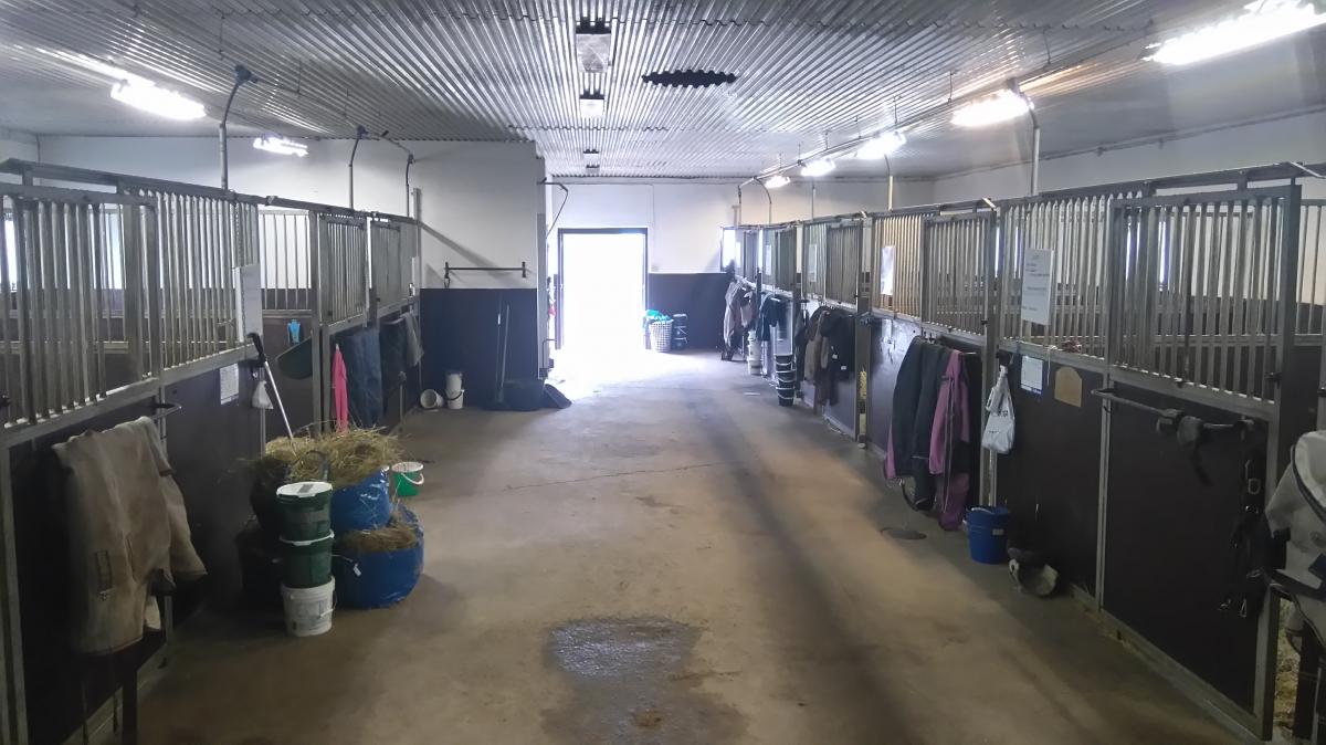 Bruna stallet